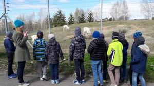 Loomaaed11